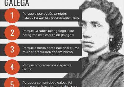 Inscreve-te na cadeira de Língua e Literatura Galega